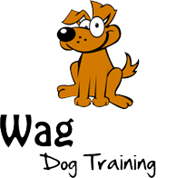 Wag Ur Tail Dog Training